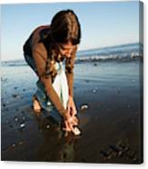 A Young Woman Collects Seashells Canvas Print
