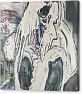 Aasimah Canvas Print