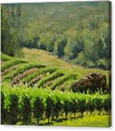 Abacela Vineyard Canvas Print