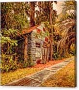Abandoned And Overgrown Canvas Print