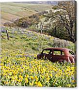 Abandoned Ford Buried In Wildflowers Canvas Print