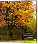 Abandoned In The Country Canvas Print