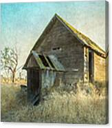 Abandoned Root Cellar Canvas Print