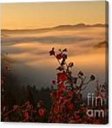 Above The Mists Canvas Print