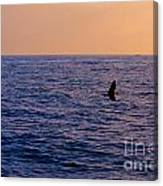 Above The Water Canvas Print