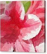 Abstract 106 Pink Painterly Flowers Canvas Print