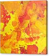 Abstract 36 Canvas Print