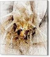 Abstract 414-08-13 Marucii Canvas Print