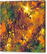 Abstract 98 Canvas Print