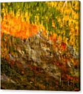 Abstract Autumn Reflections  Canvas Print