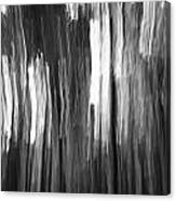 Abstract Black And White Composition Canvas Print