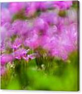 abstract Blurry pink flower background for backgrounds Canvas Print