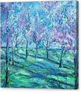 Abstract Cherry Trees Canvas Print