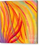 Abstract Colorful Lines Canvas Print