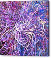 Abstract Curvy 32 Canvas Print