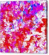 Abstract Series Ex2 Canvas Print