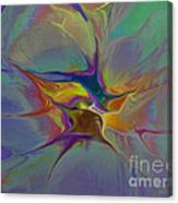 Abstract Explosion Canvas Print