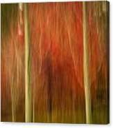 Abstract Fall 14 Canvas Print