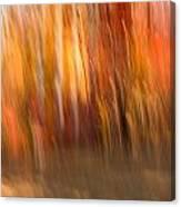 Abstract Fall 6 Canvas Print
