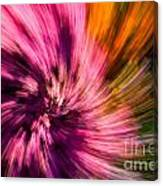 Abstract Flower Spiral Canvas Print