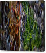 Abstract From The Sea Canvas Print