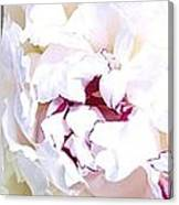 Abstract Fusion 213 Canvas Print