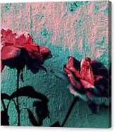 Abstract Hdr Roses Canvas Print