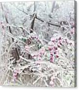 Abstract Ice Covered Shrubs Canvas Print