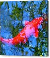 Abstract Koi 4 Canvas Print