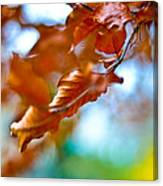 Abstract Leafs Canvas Print