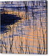 Abstract Nature At Sunset Canvas Print