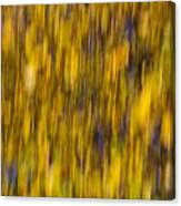Abstract Of Autumn Gold Canvas Print