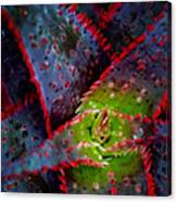 Abstract Of Bromeliad Canvas Print