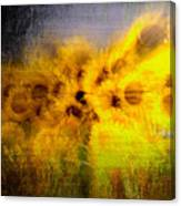 Abstract Of Sunflowers Canvas Print