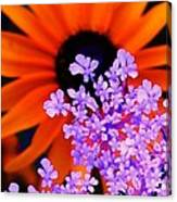 Abstract Orange And Purple Flower Canvas Print