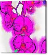 Abstract Orchid 1 Canvas Print