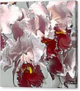 Abstract Orchid Canvas Print