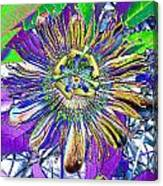 Abstract Passion Flower Canvas Print