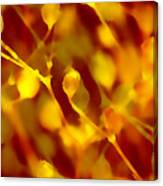 Abstract Plants Canvas Print