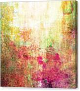Abstract Print 14 Canvas Print