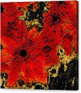 Abstract Red Flower Art  Canvas Print