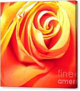 Abstract Rose 2 Canvas Print