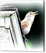 Abstract Songbird Canvas Print