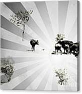 Abstract Vintage Cows Canvas Print