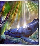 Abstract Whale Canvas Print