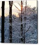 Abstract Winter Sunset Canvas Print