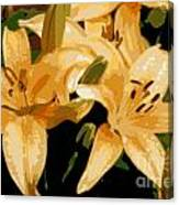 Abstract Yellow Asiatic Lily - 1 Canvas Print