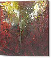 Abstract1 Canvas Print