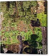 Abstracted Reflection Canvas Print