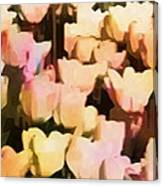 Abstracted Tulips Canvas Print
